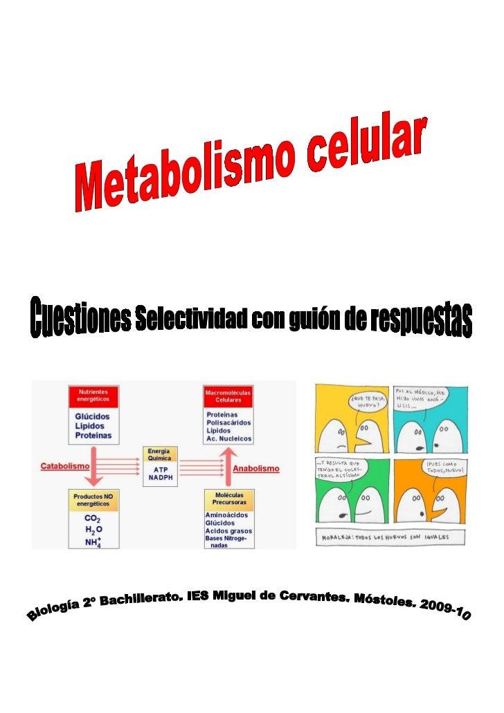 uso de anabolicos para aumentar la masa muscular