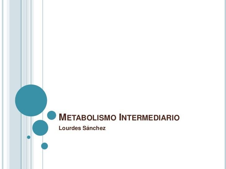 METABOLISMO INTERMEDIARIOLourdes Sánchez