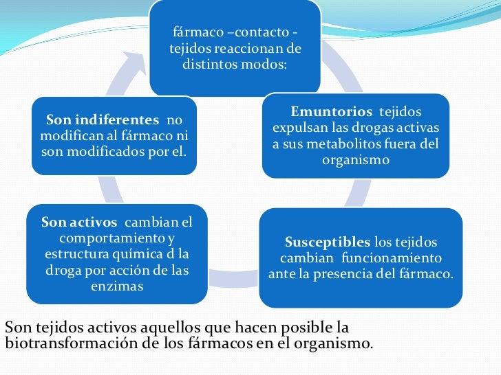 Metabolismo y eliminación del fármaco Slide 3