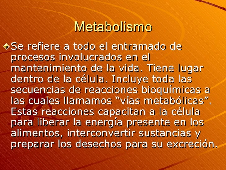 Metabolismo <ul><li>Se refiere a todo el entramado de procesos involucrados en el mantenimiento de la vida. Tiene lugar de...