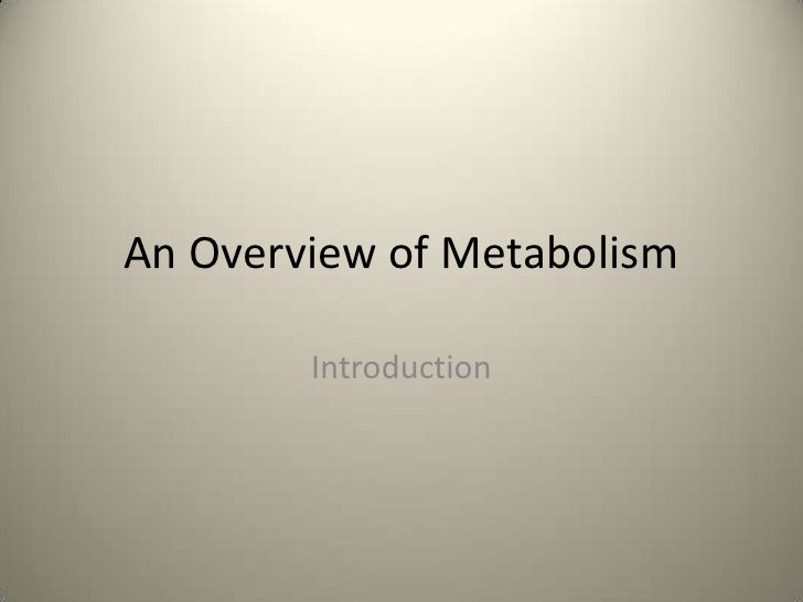 An Overview of Metabolism        Introduction