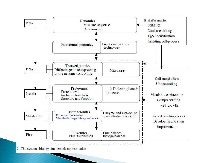 Wang et al 2006 Integrating metabolomics into systems biologyframeworkto exploit metabolic complexity: strategies and appl...