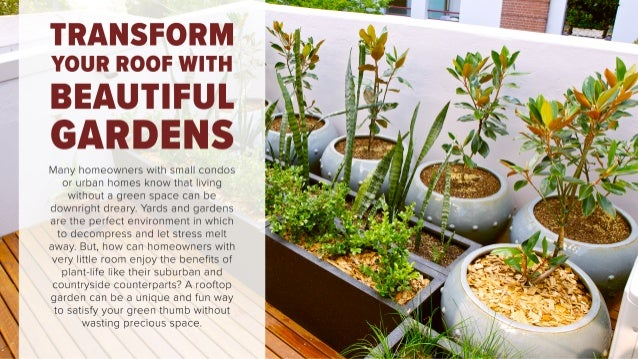 Transform Your Roof with Beautiful Gardens!