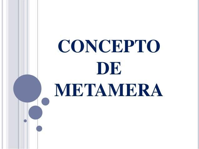 CONCEPTO DE METAMERA