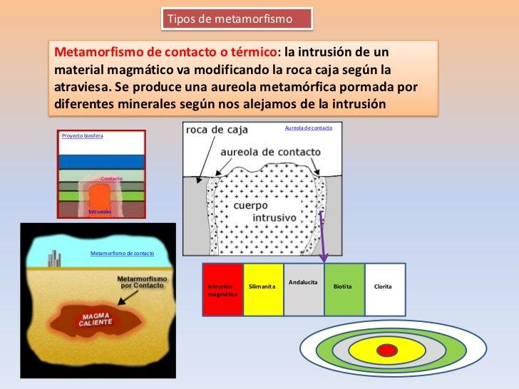 Tipos de metamorfismoMetamorfismo de contacto o térmico: la intrusión de unmaterial magmático va modificando la roca caja ...