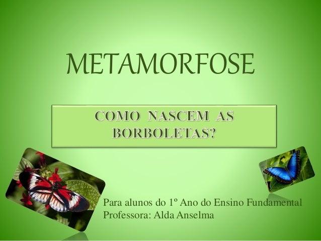 METAMORFOSE Para alunos do 1º Ano do Ensino Fundamental Professora: Alda Anselma
