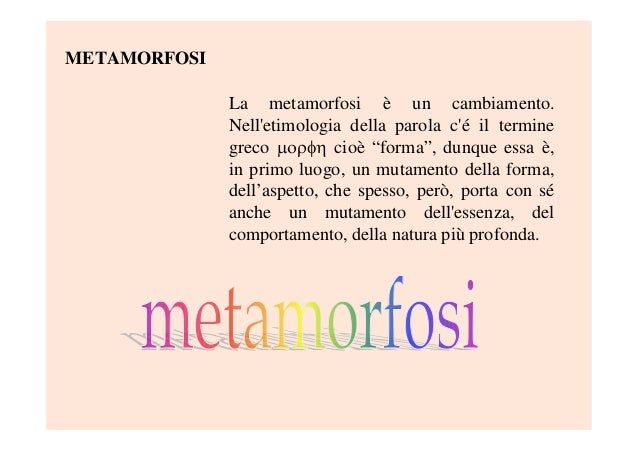 """METAMORFOSILa metamorfosi è un cambiamento.Nelletimologia della parola cé il terminegreco  cioè """"forma"""", dunque essa ..."""