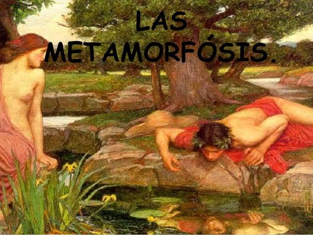 LASMETAMORFÓSIS.