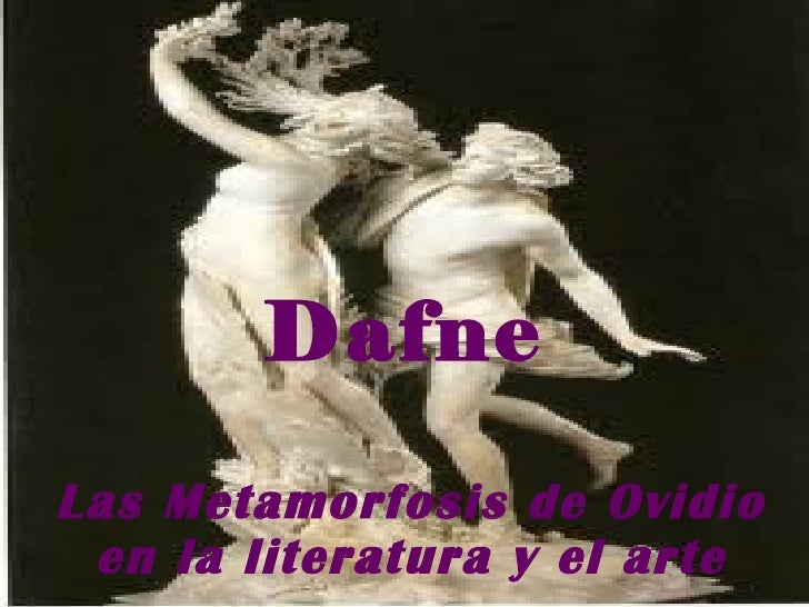 Dafne Las Metamorfosis de Ovidio en la literatura y el arte
