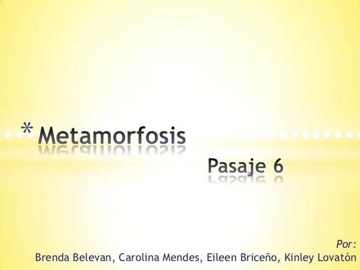 MetamorfosisPasaje 6<br />••••••••••••••••••••••••••••••••••<br />Por:      Brenda Belevan, Carolina Mendes, Eileen Briceñ...