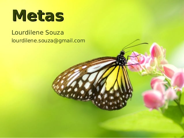 Metas Lourdilene Souza lourdilene.souza@gmail.com