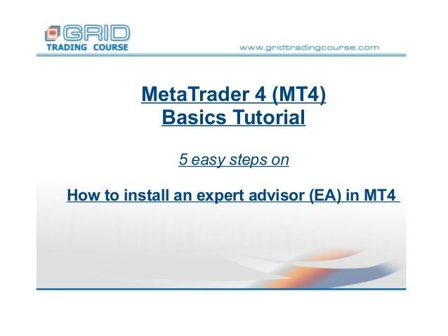 Metatrader ea tutorial windows