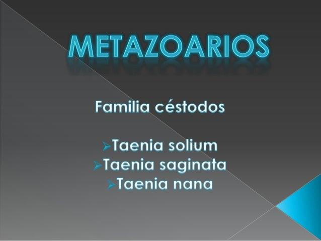 Módulo: Identifica microorganismos con base en técnicas microbiológicas para diagnóstico clínico Submódulo: Identifica mic...