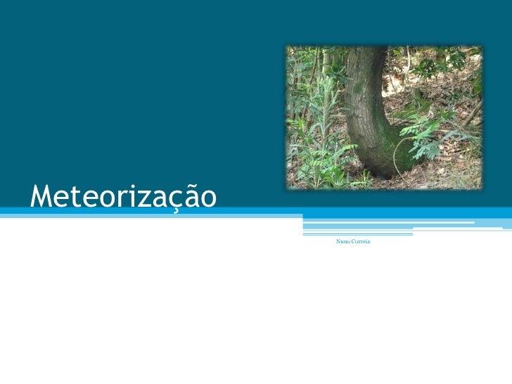 Meteorização                Nuno Correia