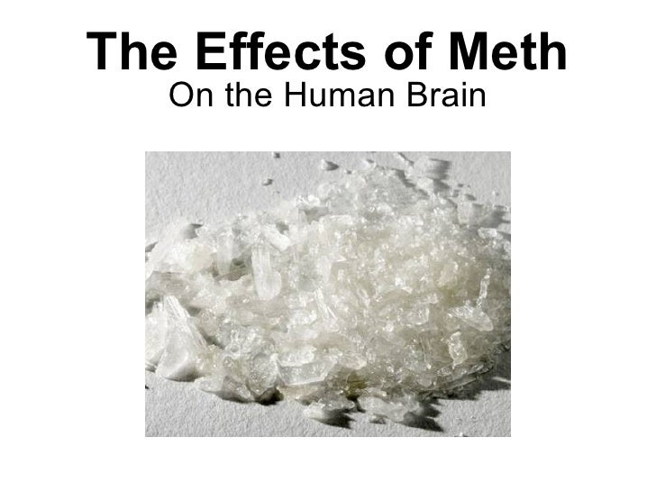 The Effects of Meth On the Human Brain