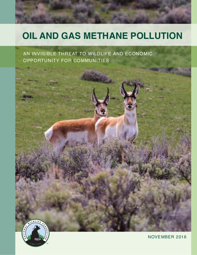 1Oil and Gas Methane Pollution: An Invisible Threat to Wildlife and Economic Opportunity for Communities Oil and Gas Metha...
