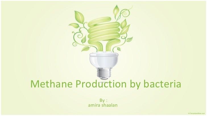 Methane Production by bacteria                By :           amira shaalan