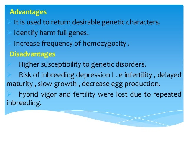 advantages and disadvantages of cross breeding in crops Development of genetically modified crops or domestic livestock could reduce genetic cause more serious diseases and have a tendency to cross breed species.