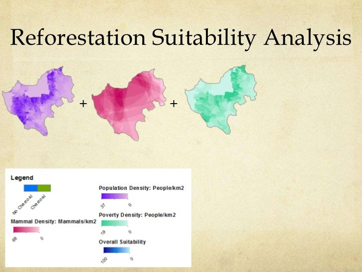 Reforestation Suitability Analysis      +        +