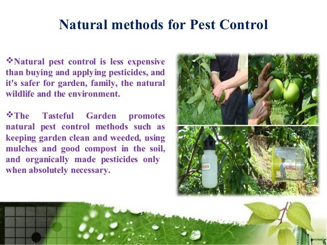 Methods For Pest Control
