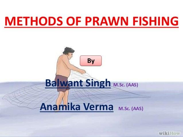 METHODS OF PRAWN FISHING Balwant Singh M.Sc. (AAS) Anamika Verma M.Sc. (AAS) By