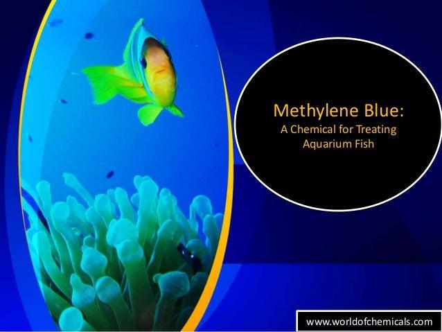 Methylene blue a chemical for treating aquarium fish for Methylene blue fish
