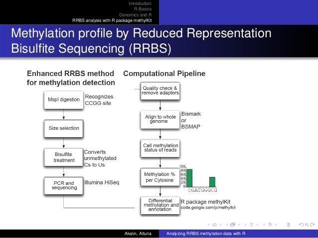 DNA methylation analysis in R