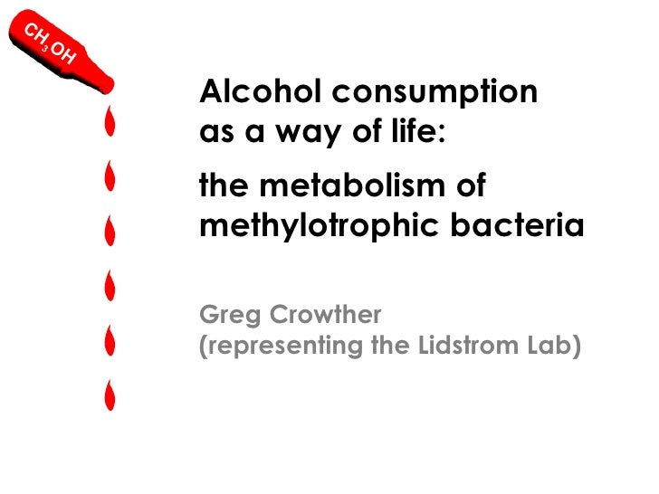 Alcohol consumption as a way of life: the metabolism of methylotrophic bacteria
