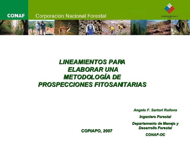 LINEAMIENTOS PARA  ELABORAR UNA METODOLOGÍA DE  PROSPECCIONES FITOSANITARIAS  COPIAPO, 2007 Angelo F. Sartori Ruilova Inge...