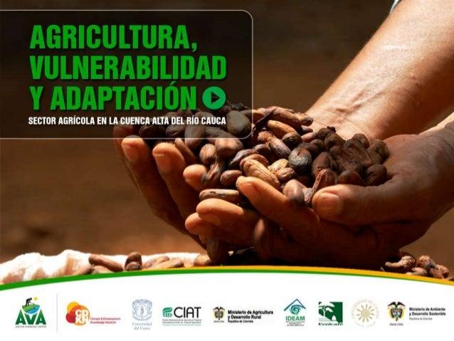 Análisis Interinstitucional y Multisectorial de laVulnerabilidad y la Adaptación al Cambio Climático para elsector agrícol...