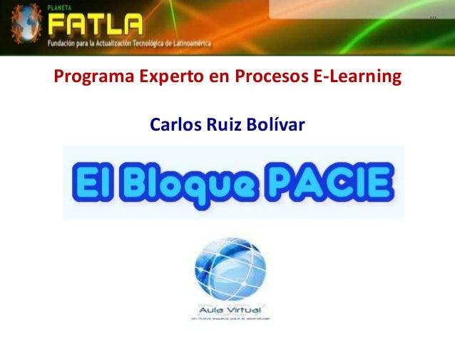 Programa Experto en Procesos E-Learning Carlos Ruiz Bolívar