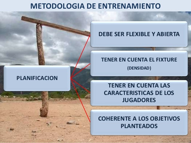 METODOLOGIA DE ENTRENAMIENTO