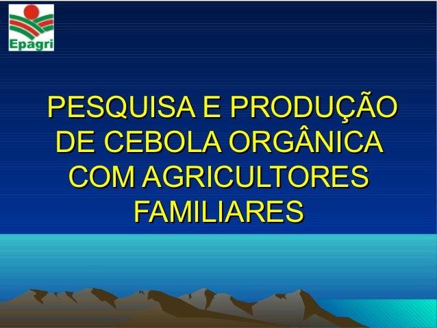 PESQUISA E PRODUÇÃOPESQUISA E PRODUÇÃO DE CEBOLA ORGÂNICADE CEBOLA ORGÂNICA COM AGRICULTORESCOM AGRICULTORES FAMILIARESFAM...