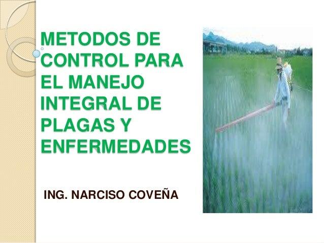 METODOS DECONTROL PARAEL MANEJOINTEGRAL DEPLAGAS YENFERMEDADESING. NARCISO COVEÑA