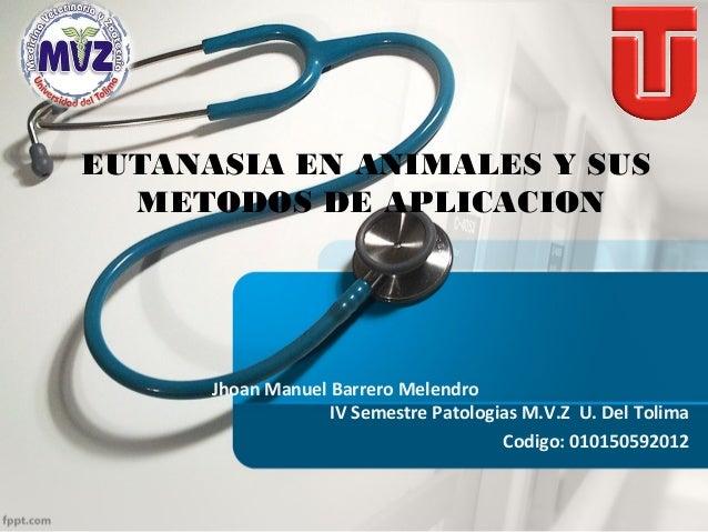 EUTANASIA EN ANIMALES Y SUS METODOS DE APLICACION  Jhoan Manuel Barrero Melendro IV Semestre Patologias M.V.Z U. Del Tolim...