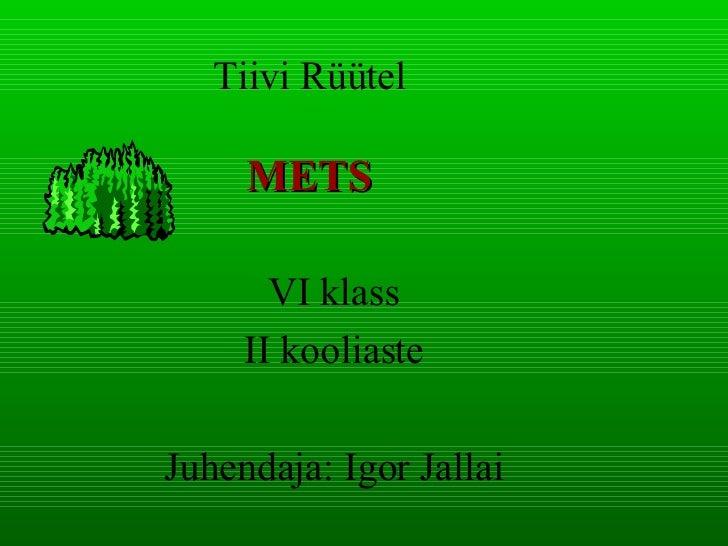 Tiivi Rüütel METS VI klass II kooliaste Juhendaja: Igor Jallai