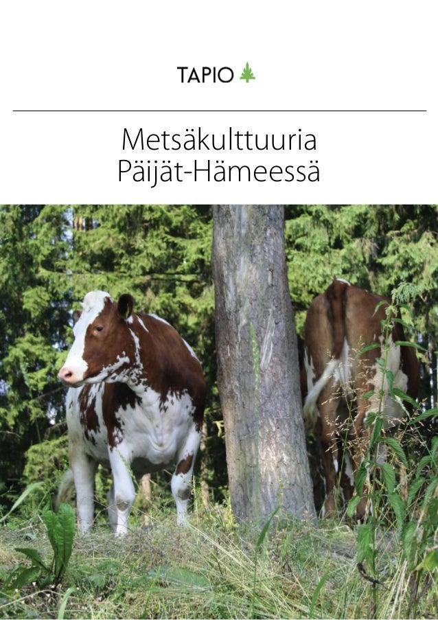 Metsäkulttuuria Päijät-Hämeessä