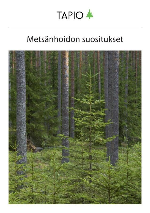 Metsänhoidon suositukset
