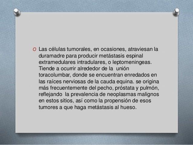 O Las células tumorales, en ocasiones, atraviesan la  duramadre para producir metástasis espinal  extramedulares intradula...