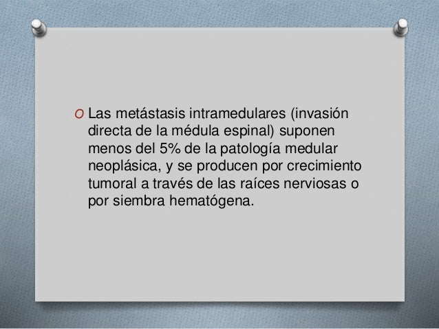 O Las metástasis intramedulares (invasión  directa de la médula espinal) suponen  menos del 5% de la patología medular  ne...