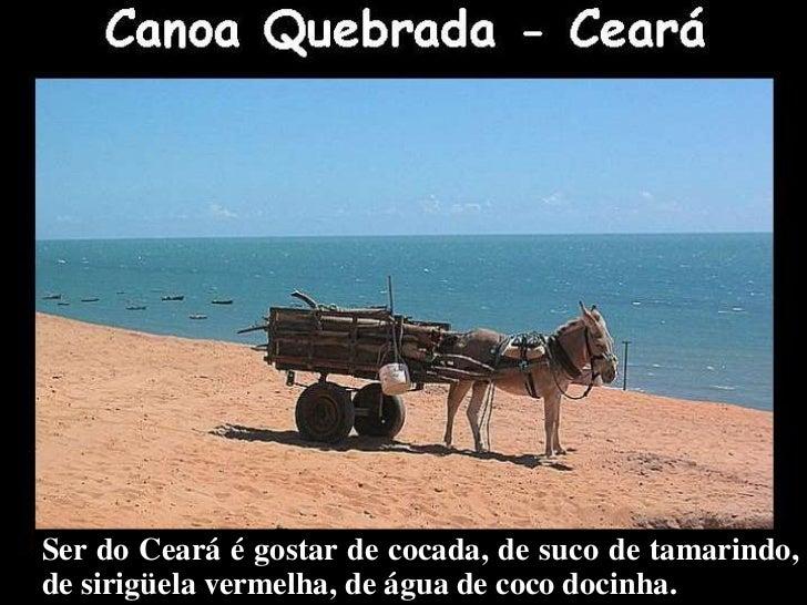 Meu Ceará Slide 3