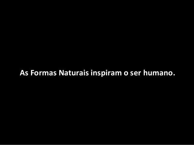 As Formas Naturais inspiram o ser humano.