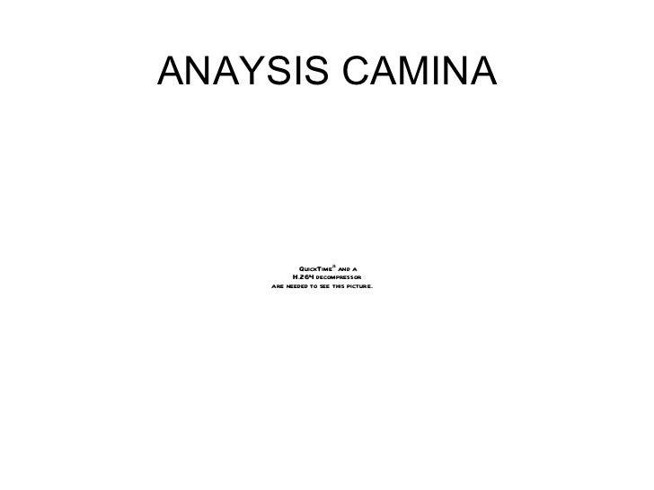 ANAYSIS CAMINA