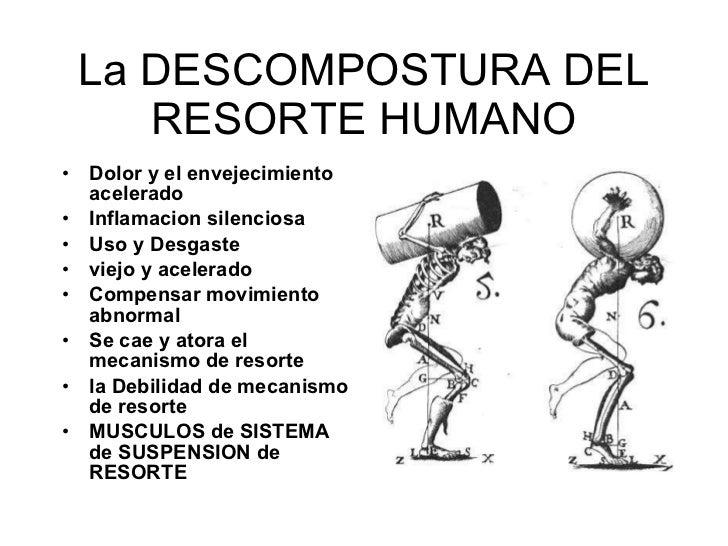 La DESCOMPOSTURA DEL RESORTE HUMANO <ul><li>Dolor y el envejecimiento acelerado </li></ul><ul><li>Inflamaci on  silenciosa...