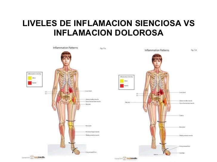 LIVELES DE INFLAMACION SIENCIOSA VS INFLAMACION DOLOROSA