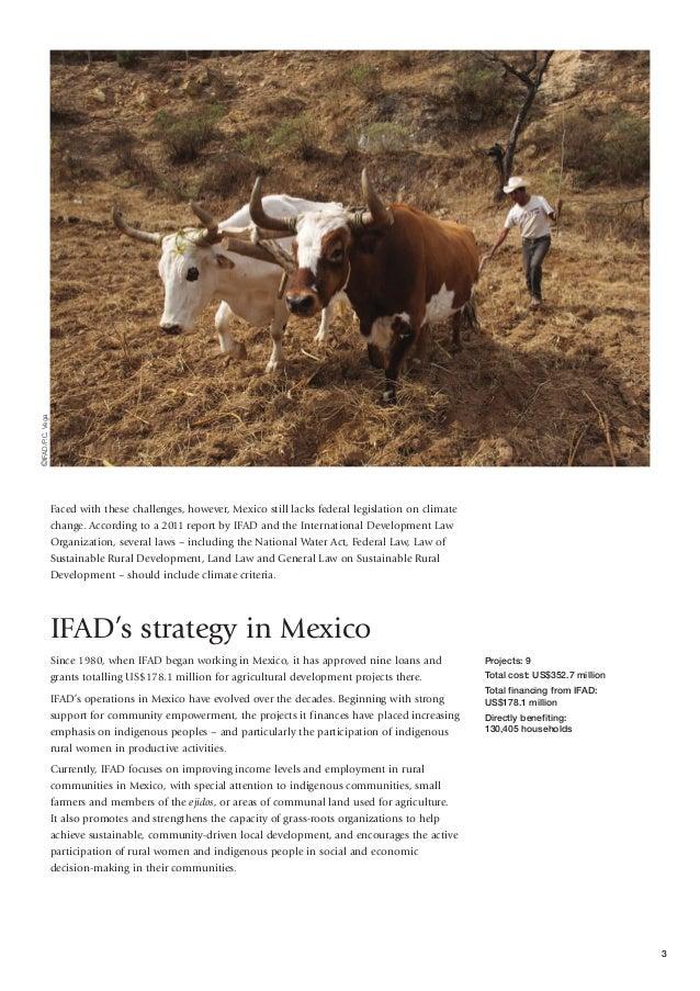Poverty in Mexico: Economic Crises & 21st Century Welfare