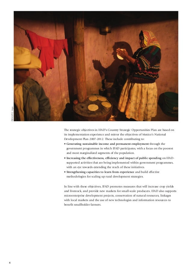 2010 Mexican Rural Development Research Reports
