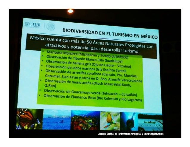 Planeta http://planeta.com/mexico http://planeta.wikispaces.com/mexico Wikipedia http://en.wikipedia.org/wiki/Mexico Flipb...