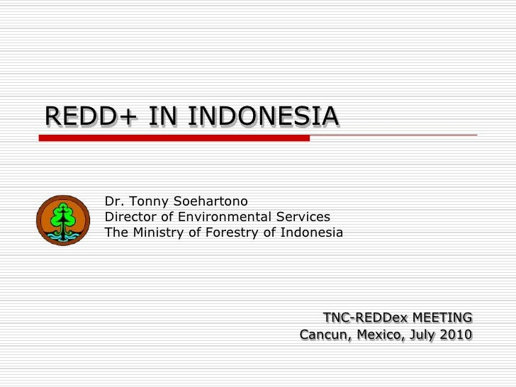REDD+ IN INDONESIA<br />Dr. Tonny Soehartono<br />Director of Environmental Services <br />The Ministry of Forestry of Ind...