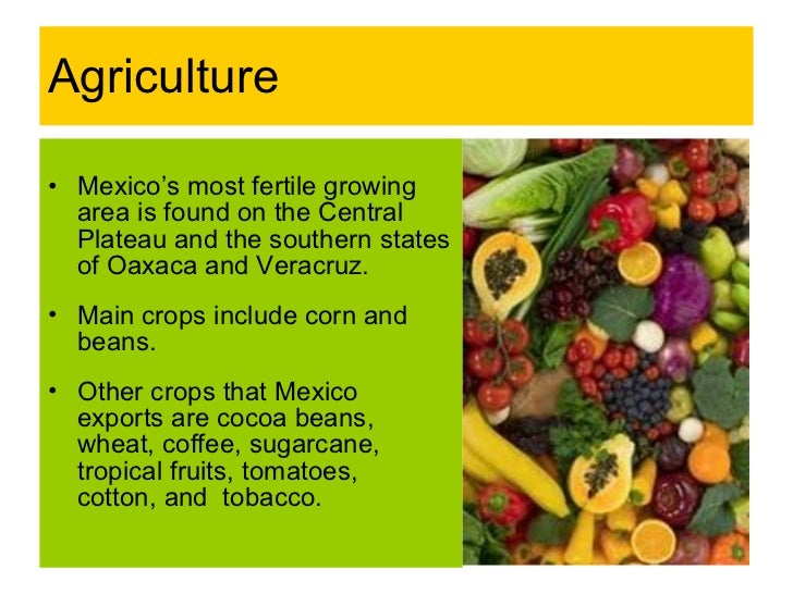 mexicos natural resources